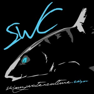 My favorite SWC design.