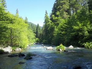 The McCloud... Upstate California, from a trip in 2011.