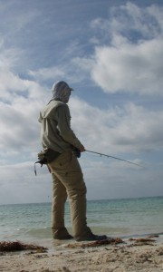 Looking for fish
