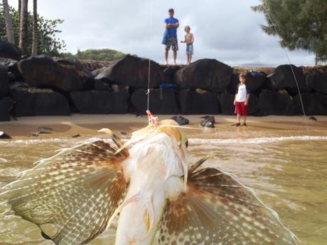 Kauai 2011 bonefish on the brain for Fly fishing kauai