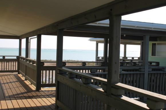 Long Island View