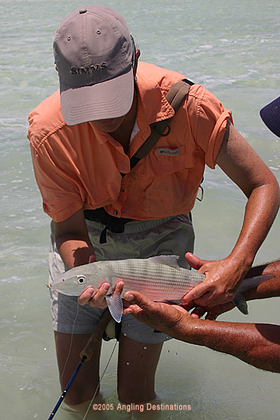 A Long Island Bonefish from a previous Angling Destinations trip.