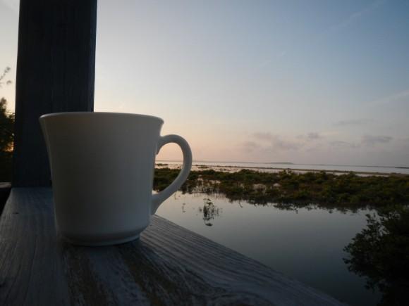 coffee Long Island