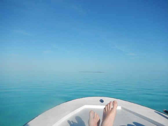 long island no horizon